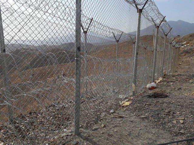 Border Fencing | Editorial