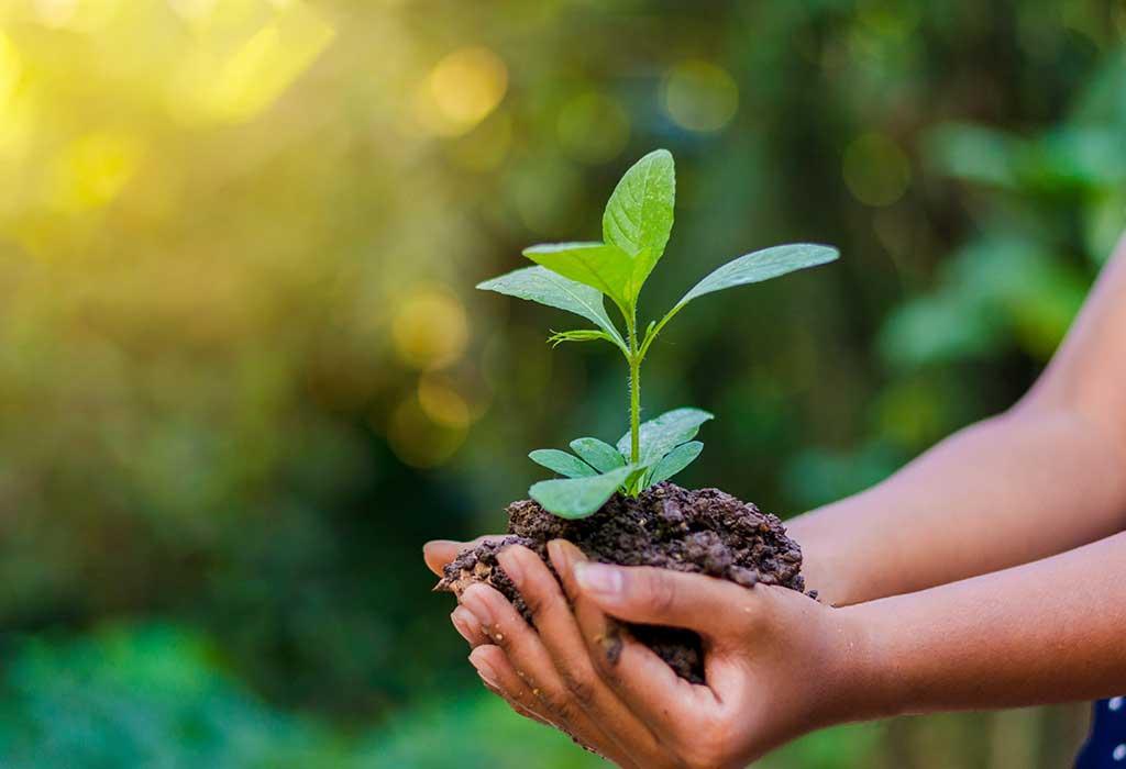 World Environment Day | Editorial