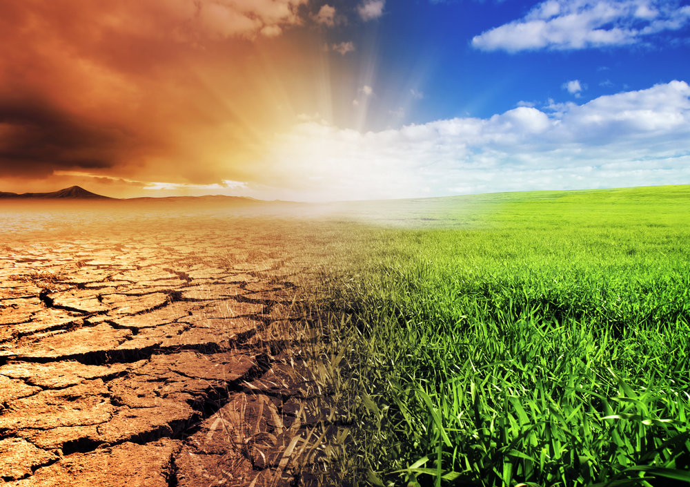 Rethinking Pakistan's Climate Change Posture By Syed Mohammad Ali