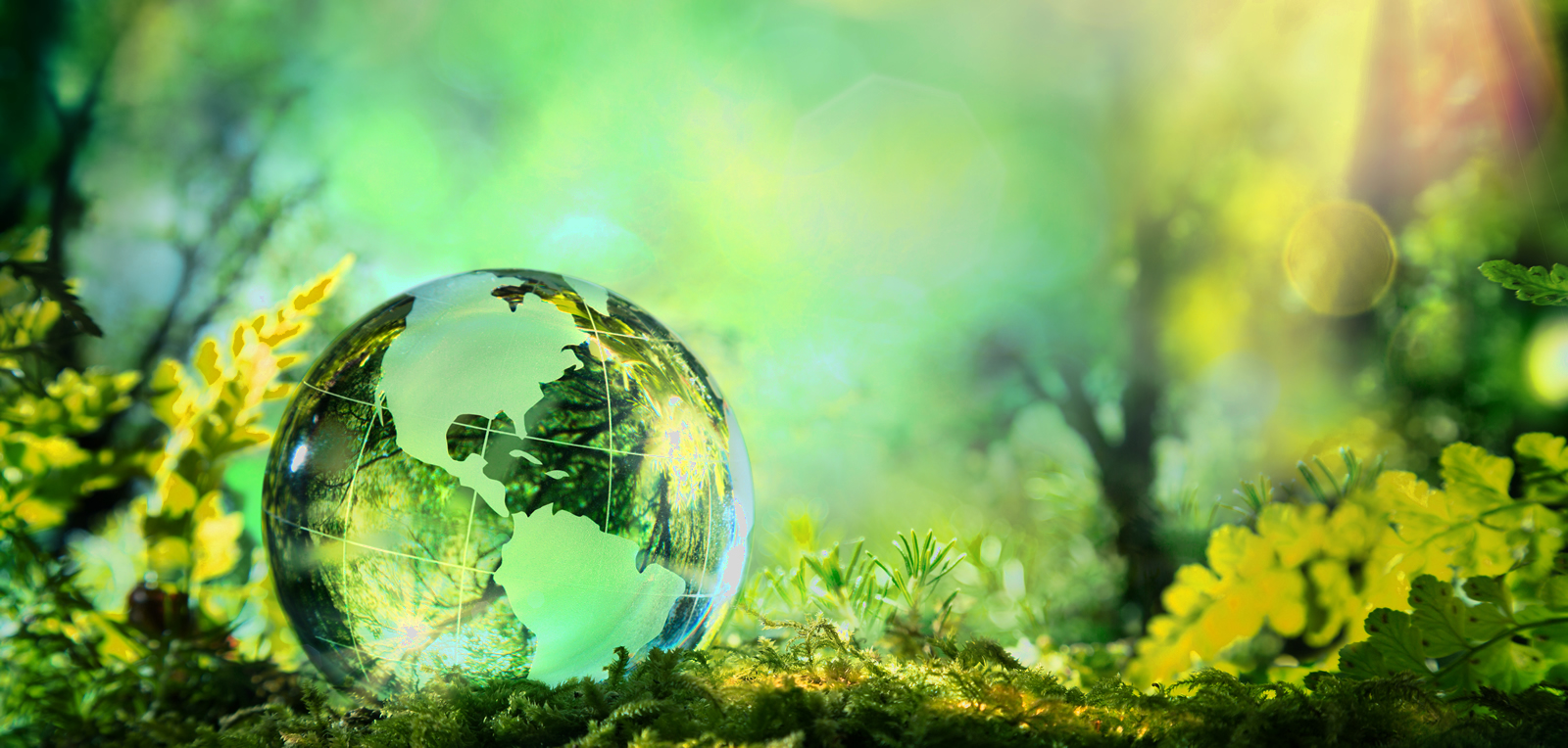 Sustainable Development and Future of the World By Muhammad Anwar Farooq